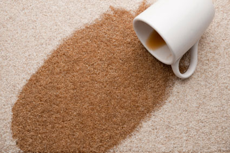 Everclean Carpet and Cleaning Furniture uses state of the art equipment and proven techniques to remove coffee and food stains like the one shown.